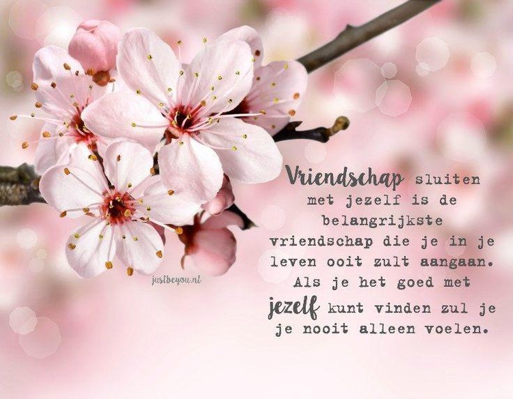 Vriendschap sluiten met jezelf is de belangrijkste vriendschap die je in je leven ooit zult aangaan.