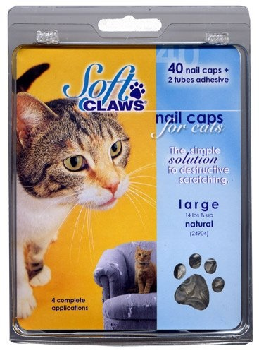 Cat Claw Covers: A Humane Option to Declawing