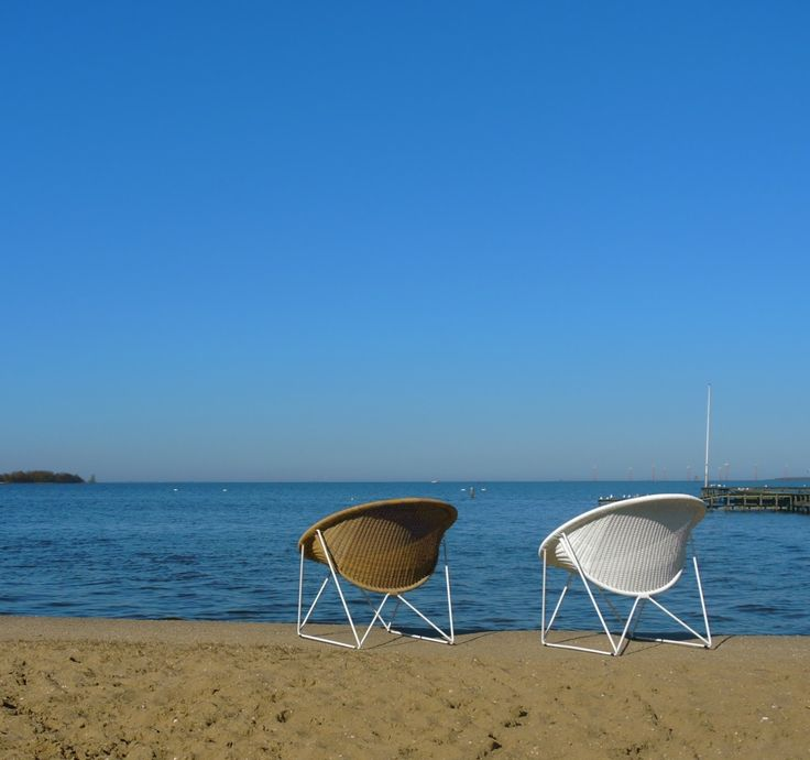 C317 white/honey and white/white enjoying the seaside