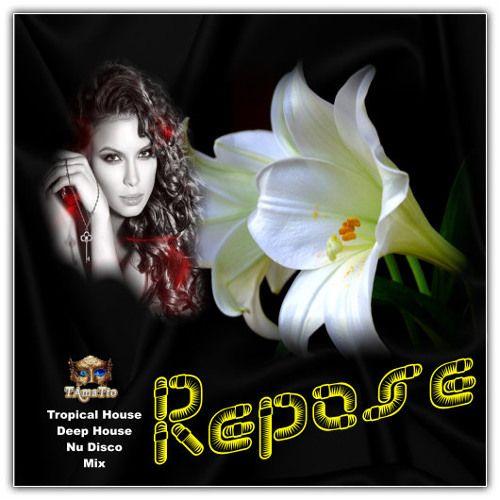 Repose (TAmaTto 2018 Tropical House Deep House Nu Disco Mix) by TAmaTto on SoundCloud