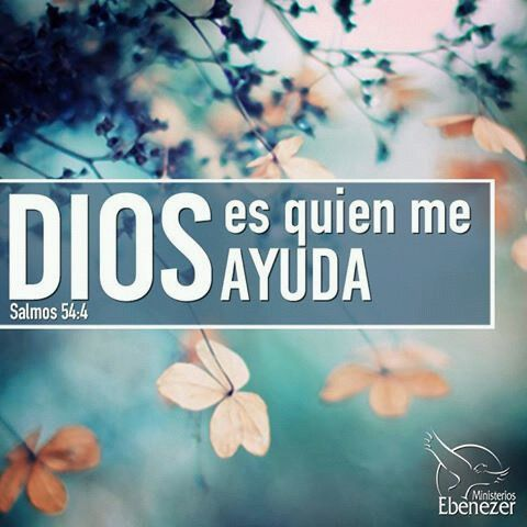 Salmo 54:4 He aquí, Dios es el que me ayuda; El Señor está con los que sostienen mi vida.♔