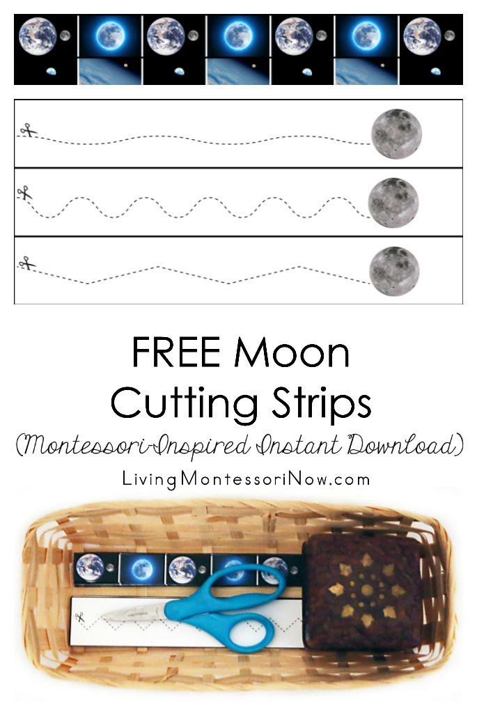 These free Montessori-inspired moon cutting strips are an instant download with a variety of skill levels; scissor cutting practice for classroom or home - Living Montessori Now #Montessori #homeschool #preschool #moontheme