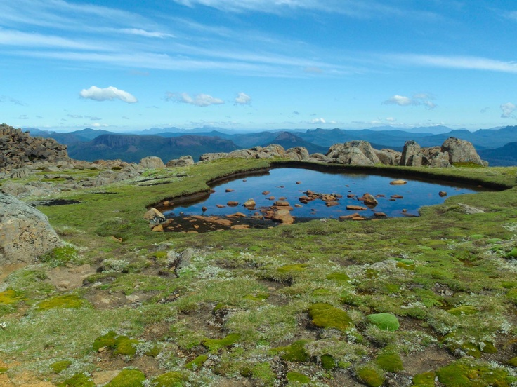Top of Mt Ossa - The Overland Track in Tasmania