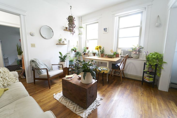 9 Colborne Rd 11 Boston Ma 02135 Studio Apartment For Rent For 1 595 Month Zumper Apartments For Rent 1 Bedroom Apartment Home