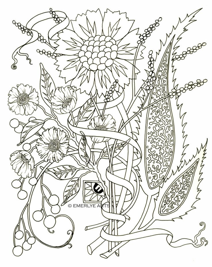 Coloring Pages Of Flowers For Free : 213 best coloring embroidery pages flowers images on pinterest