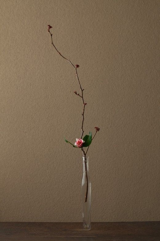 Flower Portrait by Kawase Toshiro