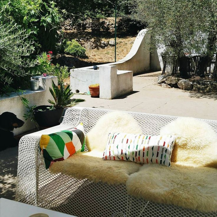 Such a lovely afternoon this 14th of juli french national holiday! Lunch ander the olive trees in our friends' garden. #undertheolivetrees #outside #garden #summer #friendstime #design #exteriordecorating #outsidefurniture #paolanavone #provence #quatorzejuillet #wohnen #jardin #deco #blog #instadeco #wonen #garten #southoffrance #tuin #frankrijk #inredning #interior4all #picoftheday