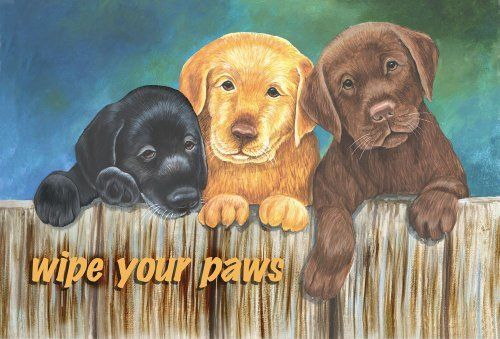 """Country At Heart Mat Wipe Your Paws 20 H x 30 L by Custom Decor. $25.99. Measures 20"""" by 30"""". Printed """"in house"""" in the northwestern United States.. Hand crafted by Amish craftsmen from recycled tin roofs!. Coordinating small & large flags, and mailbox cover also available.. Your front door offers your guests a first impression of your home. Welcome guests, old and new, with the vibrant colors of this American made floor mat for your door. This vivid rug will spruce up an..."""