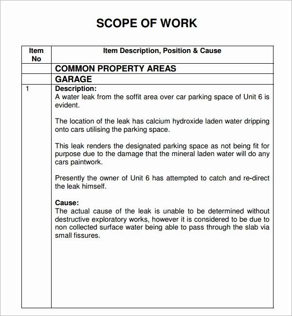 Residential Construction Scope Of Work Template Inspirational Scope Of Work 22 Dowload Free Documents In Pdf Word Excel Words Statement Of Work Word Template