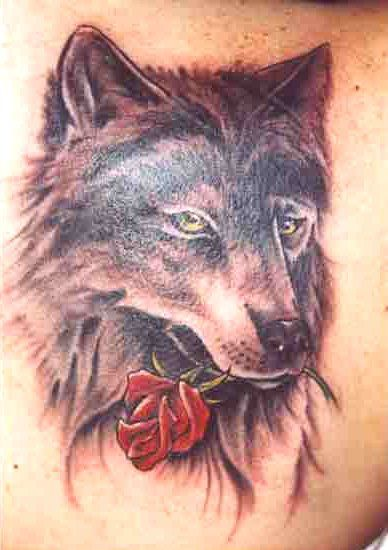 tattoos of wolves | Face Tattooz 149 - Free Download Tattoo #26891 Wolf With A Rose Tattoo ... Something is off maybe with the mouth? I like it but.......
