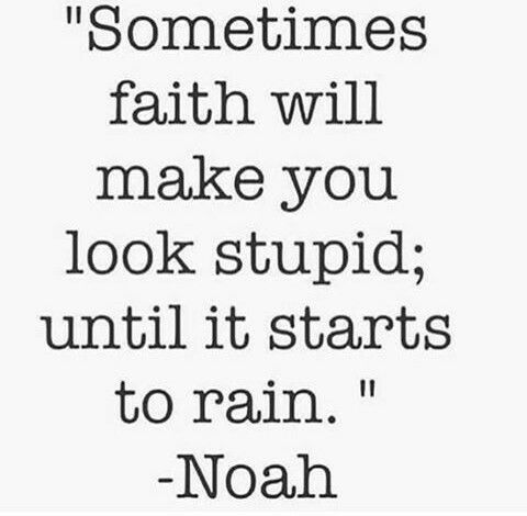 Sometimes faith will make you look stupid; until it starts to rain.  - Noah