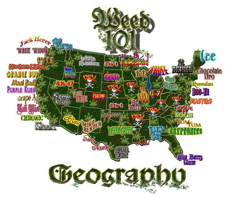 Best Cannabis Marijuana Weed Or Pot No Matter What You - Med pot us map