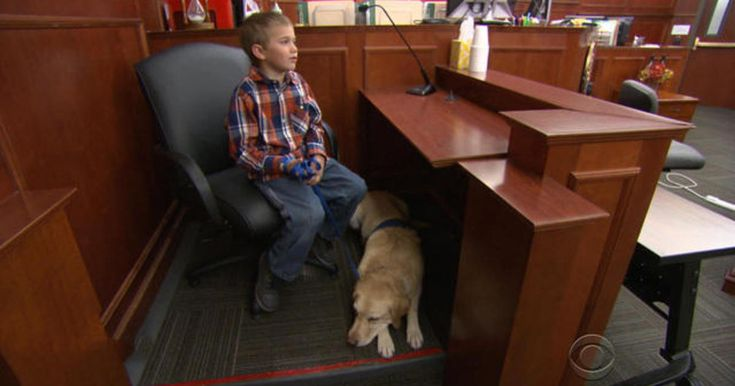 At a Colorado district attorney's office, Pella helps children involved in court cases cope