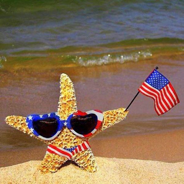 American_flag_starfish