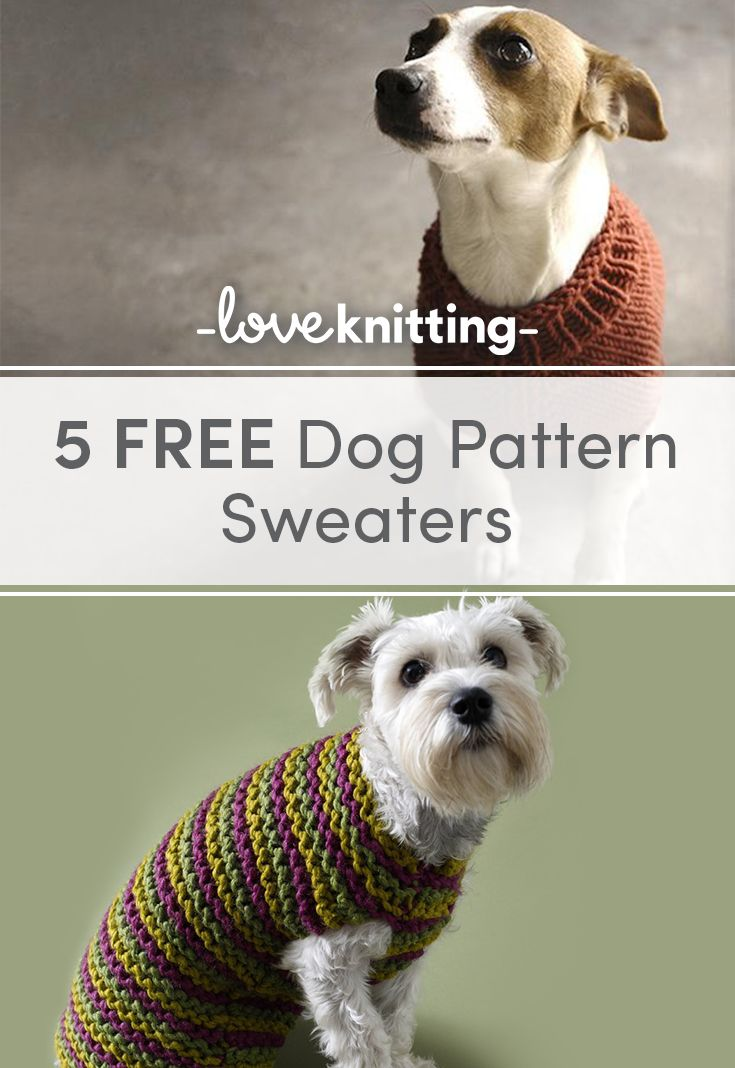 5dd6b7d4a64c We are LOVING getting out our snuggly winter knits - but many of our  four-legged friends are still shivering - time for some dog sweater knitting  patterns!