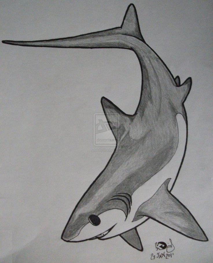 Thresher shark tattoo 1 by GleamingGrin on DeviantArt