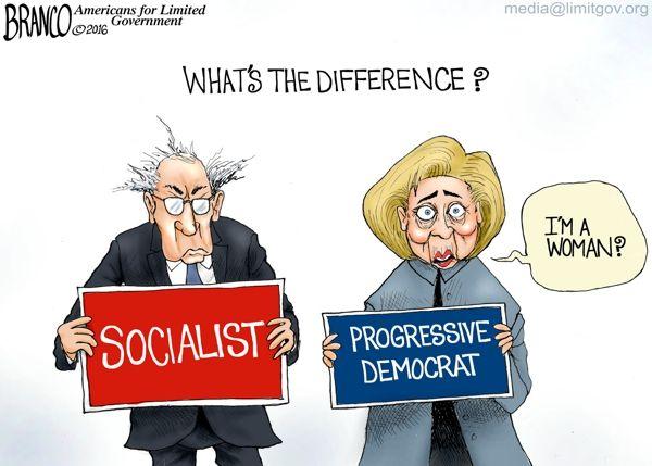 Image result for crazy democrats cartoons