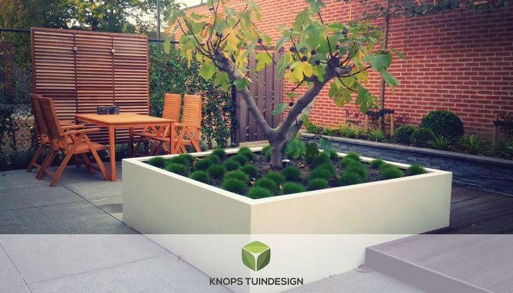 Luxe en minimalistische tuin Bavel - Knops Tuindesign - Tuinontwerp & Hovenier