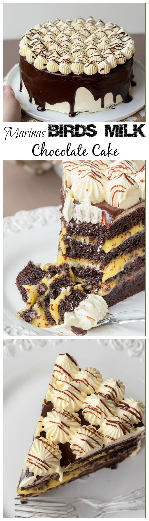 16 best caterpillar cake images on pinterest caterpillar cake