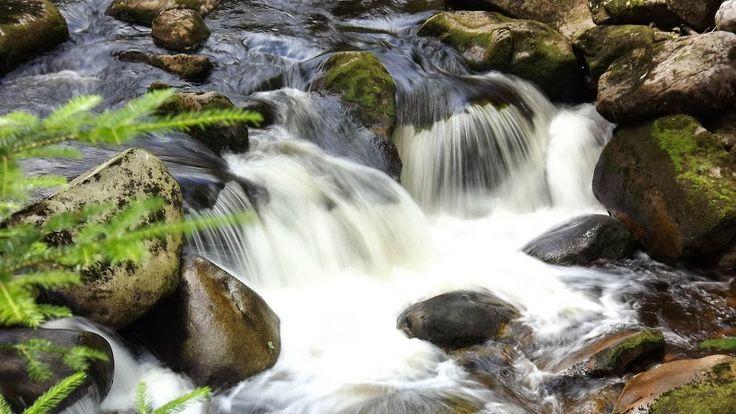 Šumava mountains Otava River  I love nature