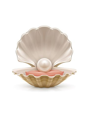Pearl. Vector illustration | Pearl tattoo, Pearls, Shell ...
