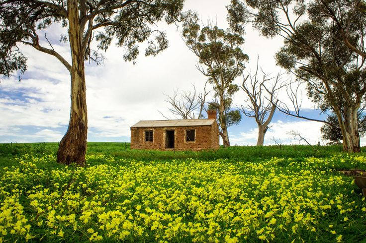 Hide away in a quaint bed and breakfast. Hire a car or bike and venture out into the rolling Clare Valley countryside. Discover more and plan your trip today. To learn more about #Adelaide | #SouthAustralia, click here: http://www.greatwinecapitals.com/capitals/adelaide-south-australia