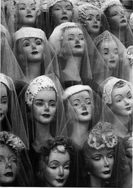 Dolls, Vintage Photos, Bridal Veils, Brides, Windows Display, Vintage Hats, Collection, Hats Display, Vintage Mannequin Head