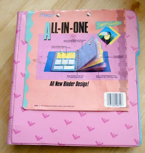 I had this binder in the 5th grade and LOVED it!  This was a rival to Trapper Keepers, but didn't have the wrap around flap to keep it shut.  And it was also geared solely towards girls (or anyone who liked a lot of pink and pastels anyway, lol.)  The paper in the notebooks was teal, lavender, pink, and peach.  Teachers loathed the colored paper, lol.  I'm so happy I found this photo... haven't seen one of these in YEARS.