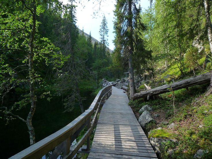Pyhä-Luosto National Park, Finland.