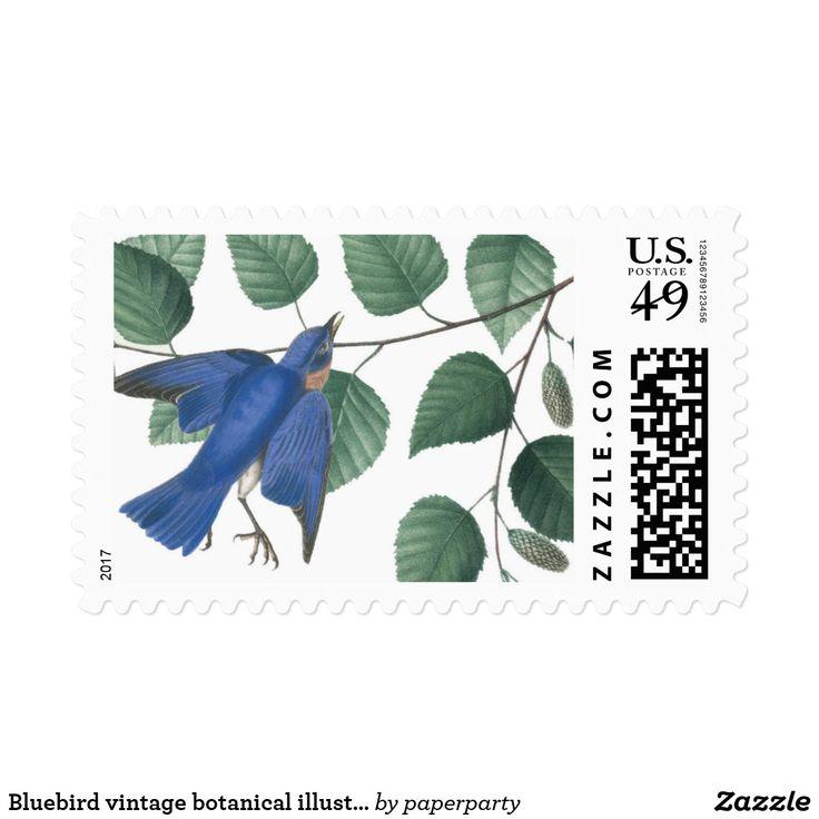 Bluebird vintage botanical illustration postage