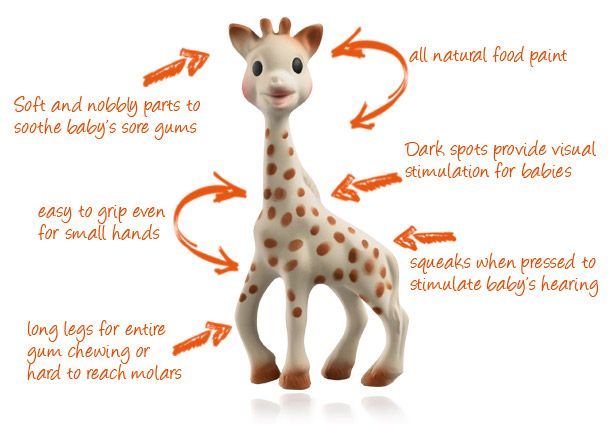 The anatomy of Sophie the Giraffe.    Rocajo Studio: One for the Theme: Sophie the Giraffe baby teething toy