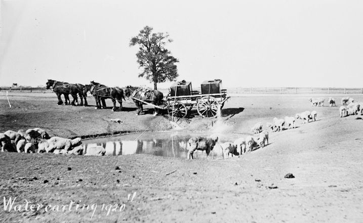 Water carts filling a dam during the drought of Autumn 1910, near Nhill.
