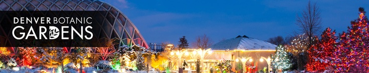 December 8 Trail of Lights at Denver Botanic Gardens