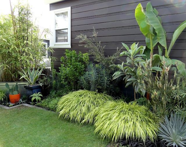 danger garden: The rest of the back garden…