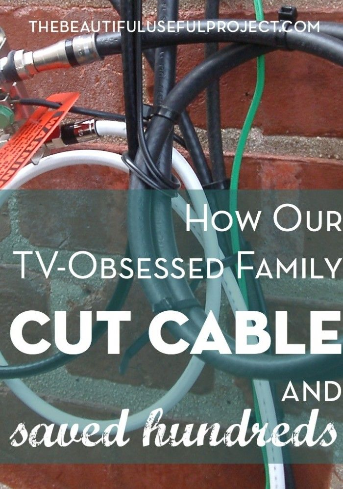 We were reluctant to cut cable, but doing so saved us hundreds of dollars this year. And, we didn't have to give up TV.