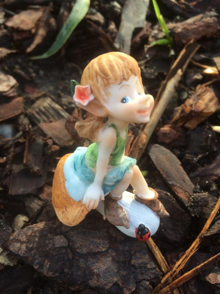 Garden pixie sitting on a mushroom