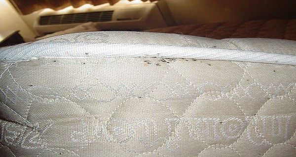 matrac-tisztitasa