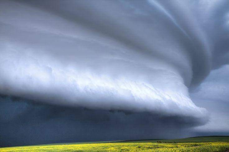 The Big One - Large shelf cloud in Saskatchewan. Photography by Ryan Wunsch