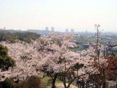 大阪市内からちょっと足をのばさないといけないけど摂津峡公園の桜は綺麗ですよ 家族連れもたくさん訪れる人気のお花見スポットとなっています 花見シーズンにはさくら祭りも毎年開催されているので今年の花見は摂津峡公園に行ってみてね tags[大阪府]