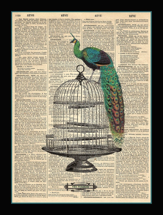 old book art w/ peacock. I've seen this on etsy.
