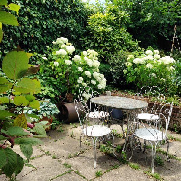 22134 best green  u0026 white landscaping images on pinterest