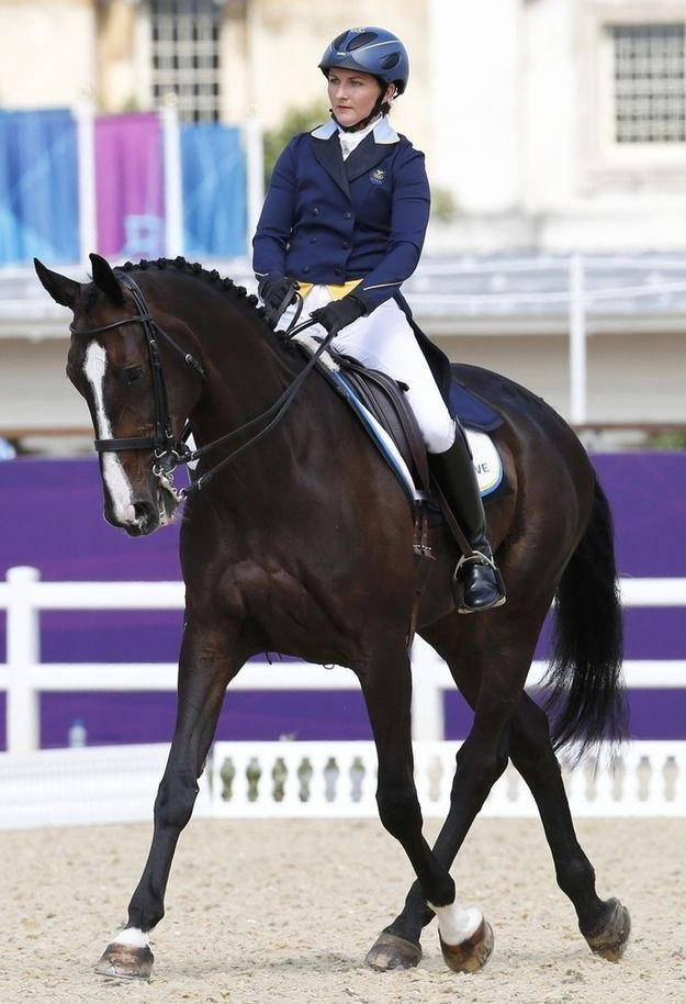 La Fair!   The 29 Prettiest Horses In The 2012 Olympics Eventing Competition