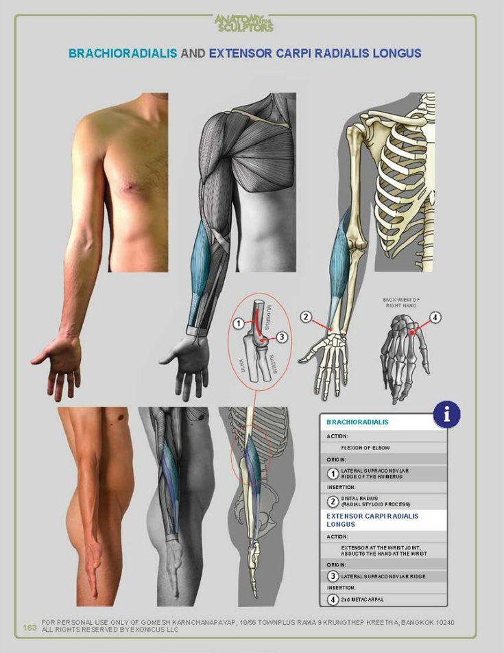 63 best Healing Modalities images on Pinterest | Vagus nerve ...