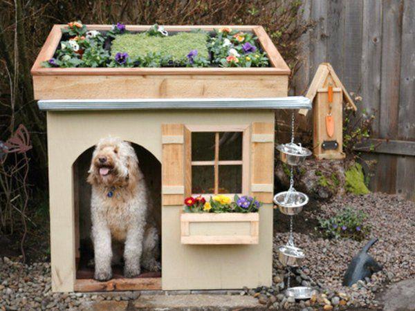 1000 id es sur le th me niches pour chien sur pinterest for Repulsif chien exterieur naturel
