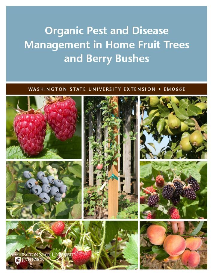 Organic Pest and Disease Management in Home Fruit Trees and Berry Bushes | WSU