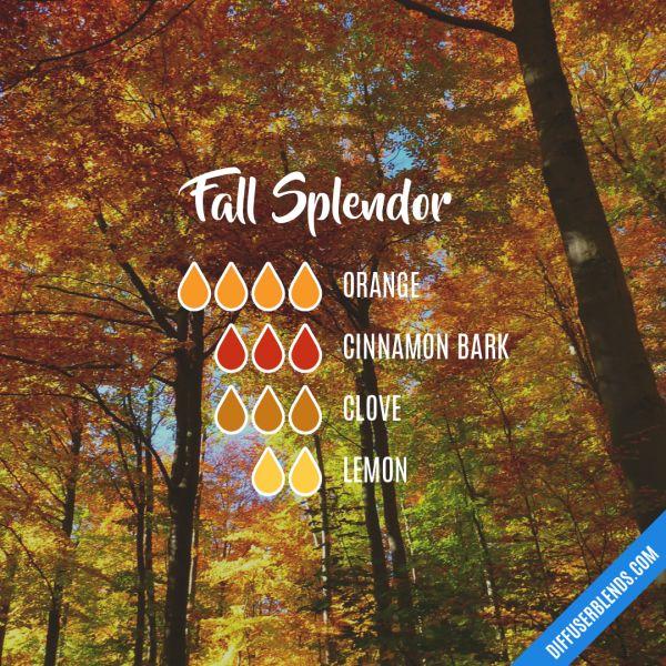 Fall Splendor - Essential Oil Diffuser Blend