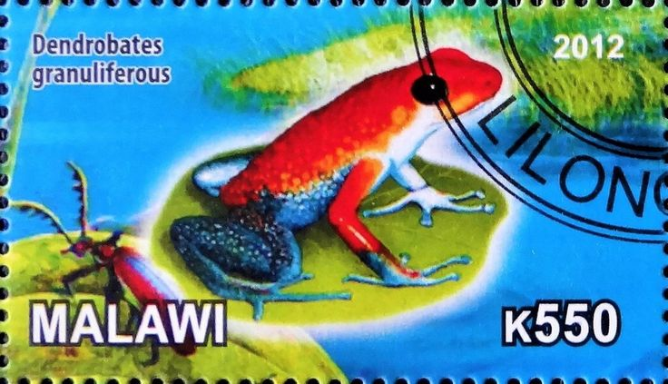 Stamp: Dendrobates granuliferous (Cinderellas) (Malawi) Col:MW 2012-48/4