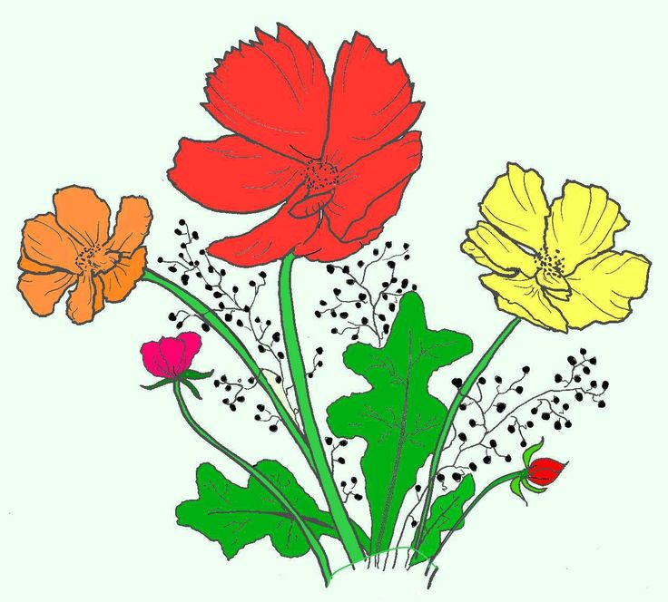 Another favorite colouring picture from Favorite Florals: Coloring Book for Adults who Enjoy Gardens and Flowers. Click here to view.