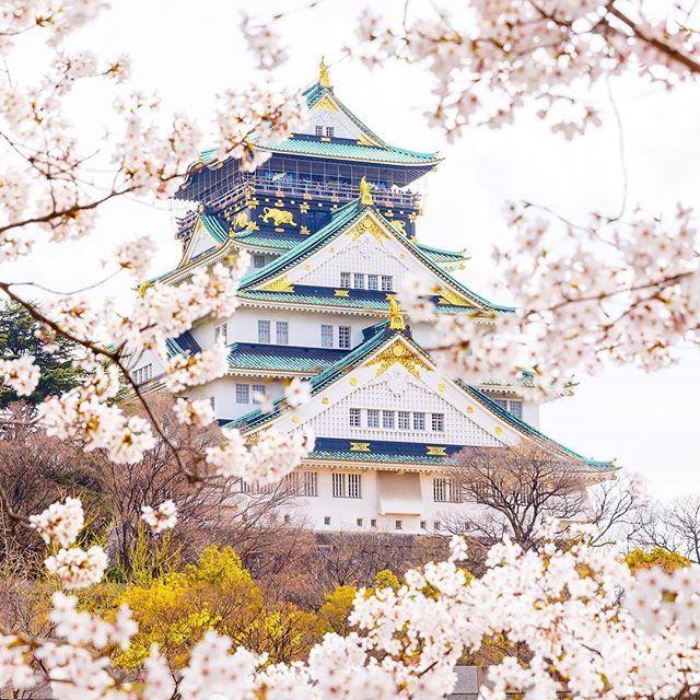 🌎Замок Осака (Osaka Castle) | Япония.🇯🇵  📝Замок в Осаке — пятиэтажный самурайский замок🏯 в городе Осака, Япония, который играл ключевую роль в японской истории конца XVI — начала XVII столетий. Сейчас замок — символ города, его истории, а для людей никогда не бывавших в Японии, иногда и символ мечты.  Замок был построен в 1585-98 годах полководцем Тоётоми Хидэёси по образцу замка Адзути, который за десять лет до этого выстроил для себя Нобунага Ода. Хидэёси завязал на Осаку важнейшие…