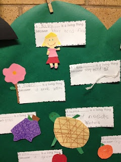 To introduce Living Things, we talked about the differences between living things and non living things. Then I let each student pick a living thing to make out of construction paper scraps. They glued it to a paper and wrote what made it a living thing; such as needs air, needs water, etc. I glued them all to a big tree to display in the hall.